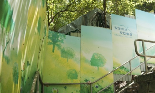 Why Hong Kong is scared of trees: the fight for urban forestry