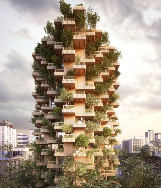 penda + tmber proposal for a timber tower bridges the gap between nature and culture