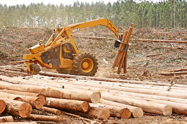 PMD Forestry Total Harvesting Services believe that Bell Loggers are the best machines for stacking, loading and sorting timber in Africa