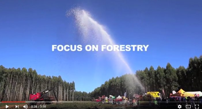Focus on Forestry