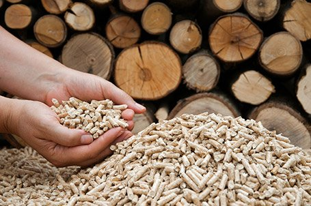 Sefa to Support the Development of a Biomass-to-Power Plant in South Africa