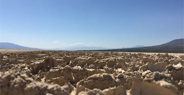 Western Cape drought: When panic begins to set in, cool heads are needed