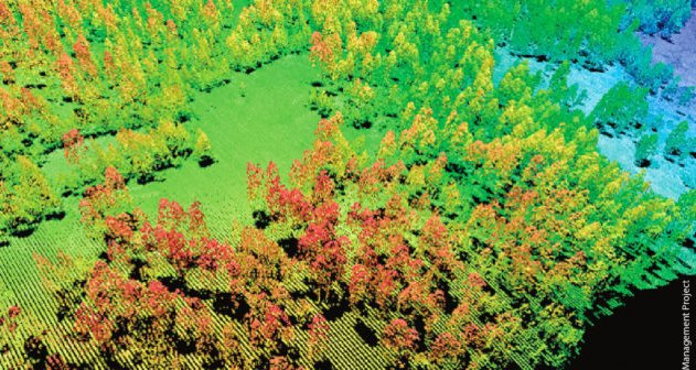Check out use of LiDAR in forestry applications