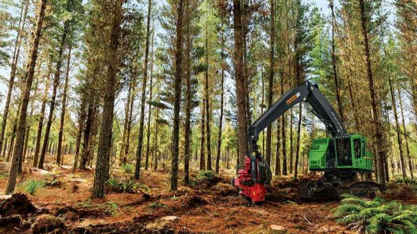 John Deere Incorporates Waratah TimberRite H-16 Control System on Harvesters and Swing Machines to Improve Efficiency