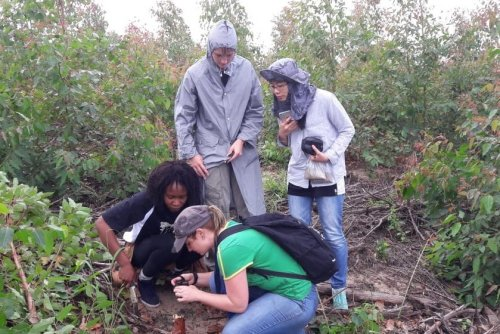 Fieldwork To Understand The Emerging Ceratocystis Threat To Eucalyptus In South Africa